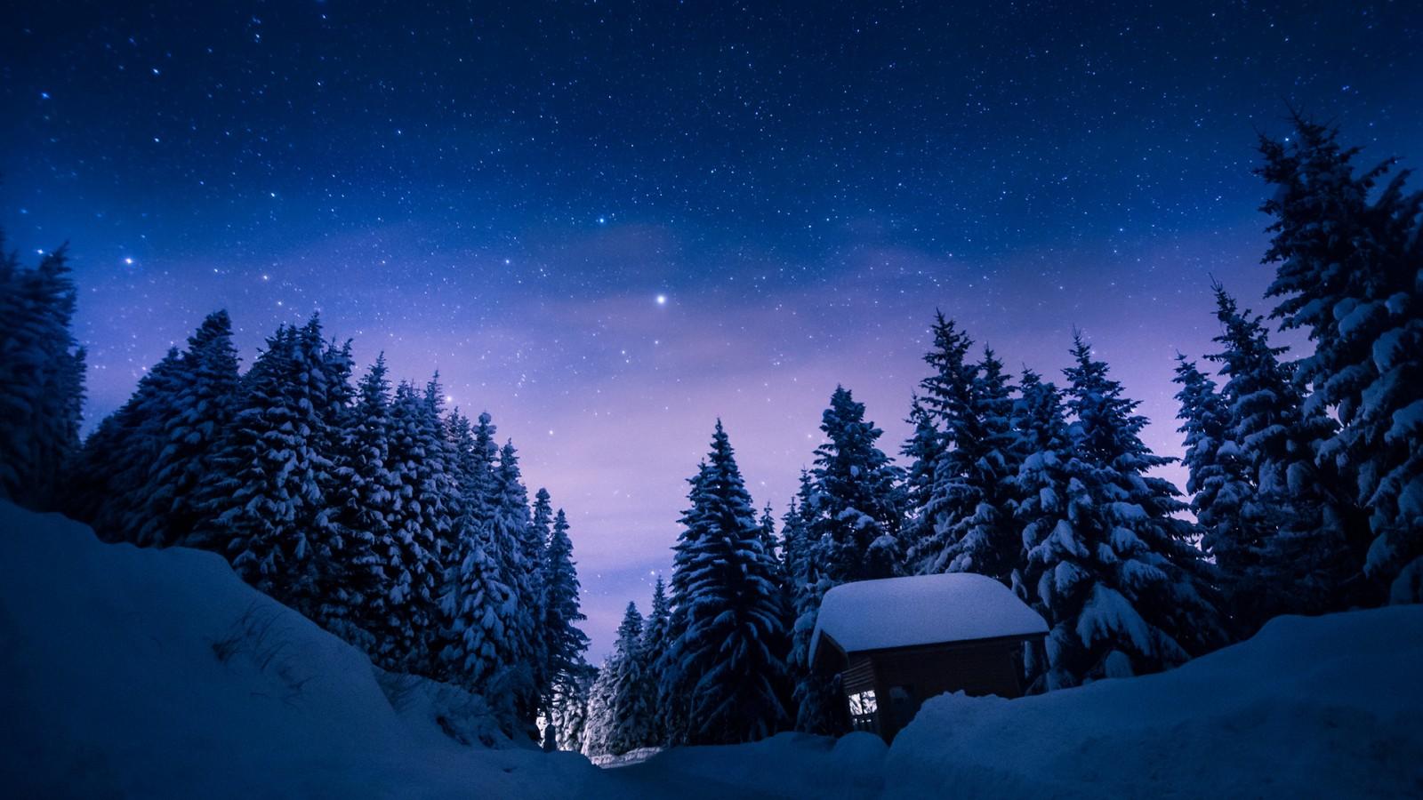 zima-sneg-derevya-doroga-3608.jpg