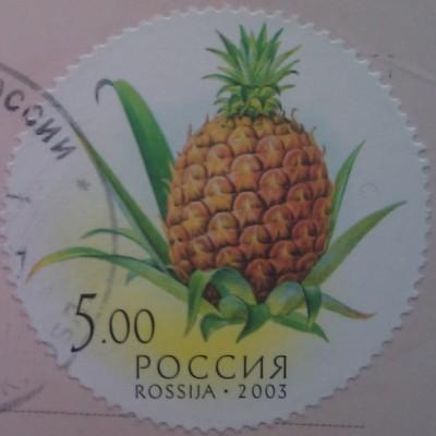 2003 Дары природы ананас 5