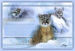 Зимняя симфония.jpg