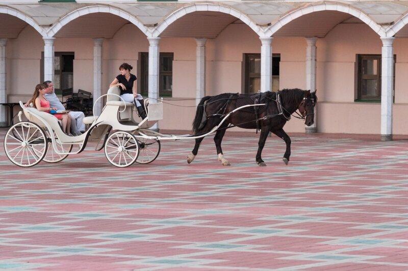 Лошадь катает туристов, Казанский кремль