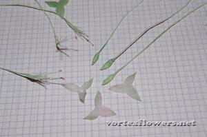 Мастер-класс. Мелкие цветы из ткани от Vortex  0_fbf0d_7d2e7dd3_M