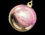 VC_Christmasrose_EL10_shadow.PNG