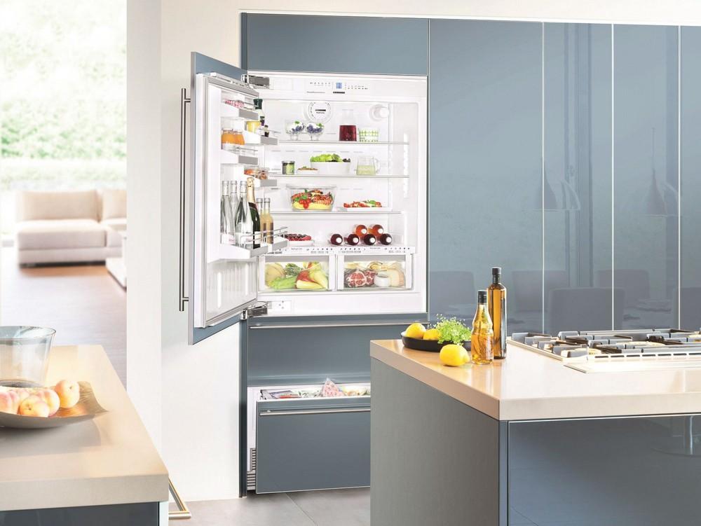 большие встраиваемые холодильники с декоративными панелями