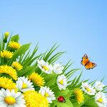 Spring (4) [преобразованный]