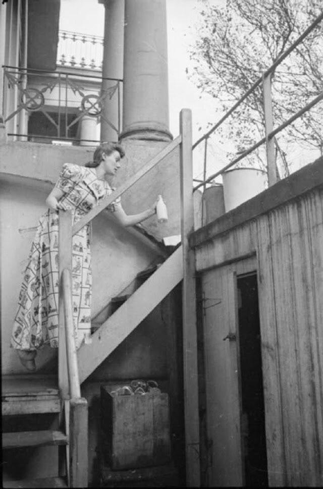 04. Оливия Дэй забирает молоко и газеты с верхней ступеньки лестницы, ведущей в подвал ее дома