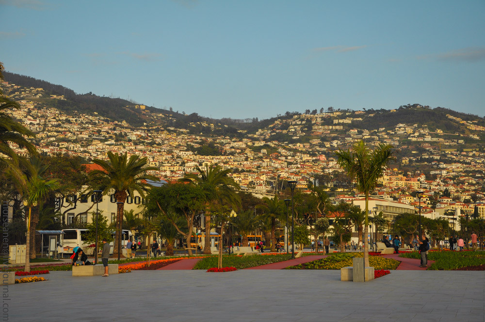 Madeira-(276).jpg