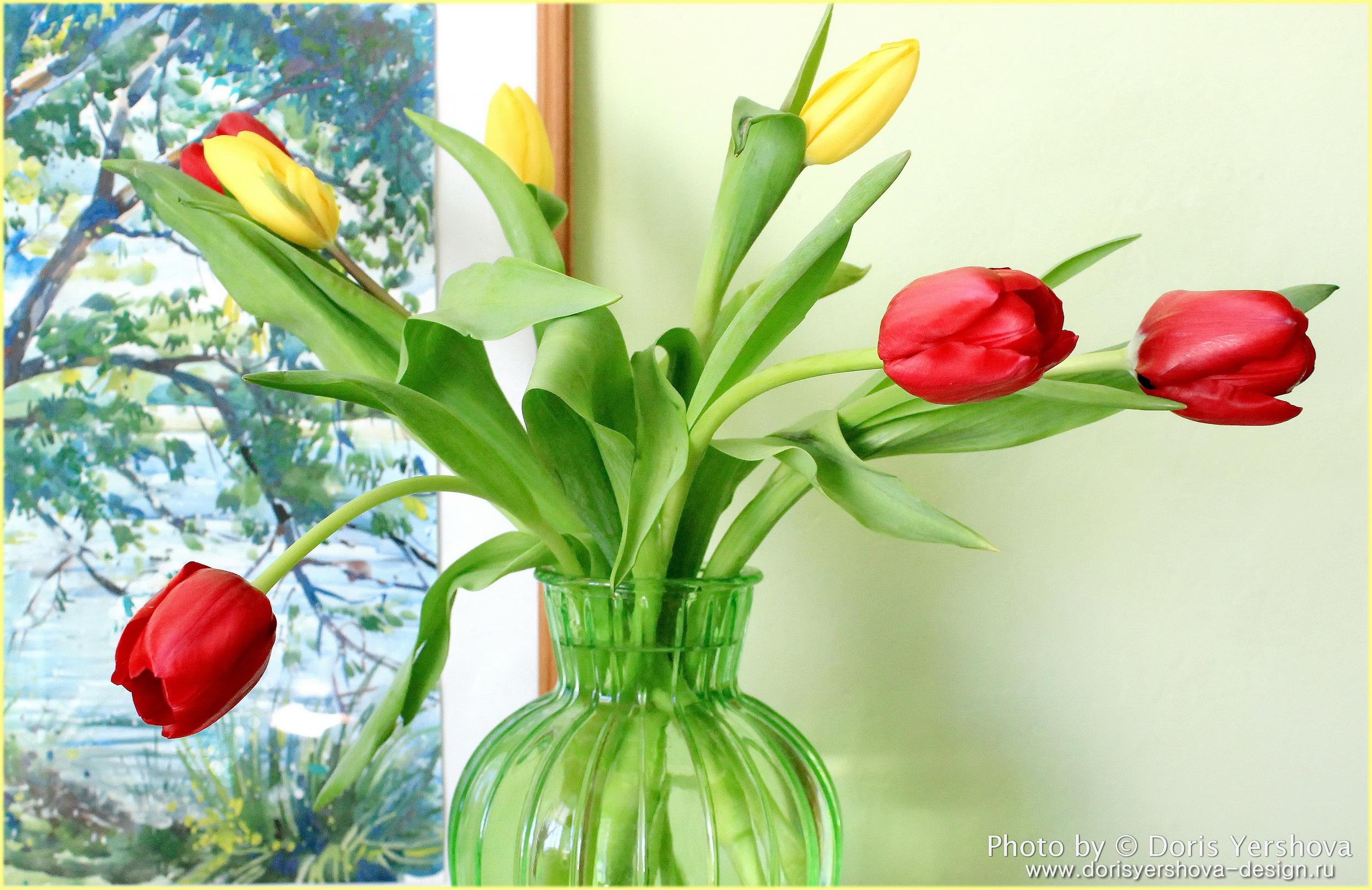 тюльпаны, фото Дорис Ершовой, с праздником 8 марта, цветы, весна, зеленый, желтый, бордо, ваза