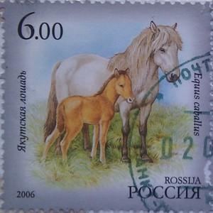 2006 фаунаЯкутии лошадь 6