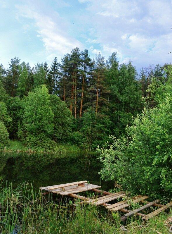 Тихий омут в глухом лесу...Там живет Водяной.