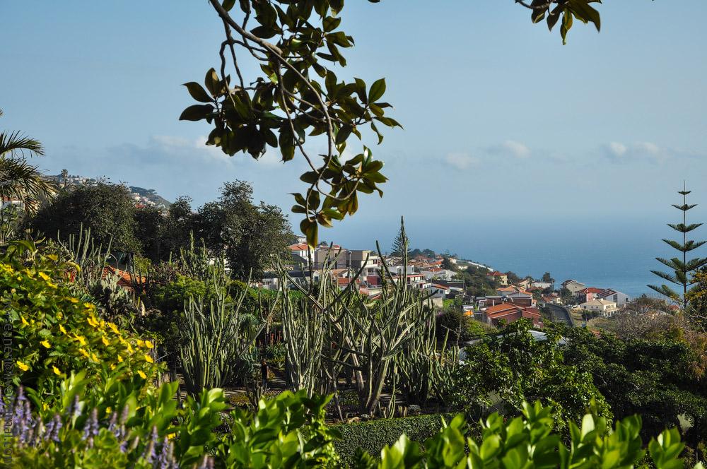 Madeira-Garten-(15).jpg