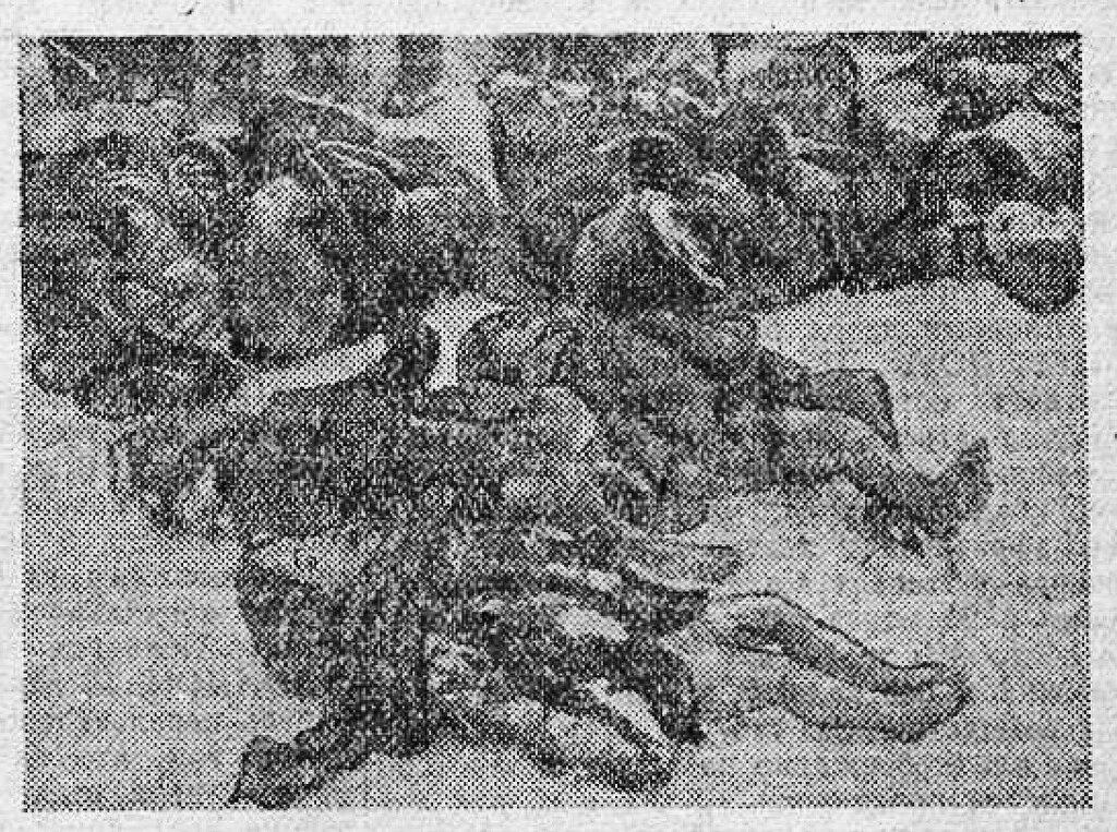 «Красная звезда», 20 апреля 1943 года, идеология фашизма, что творили гитлеровцы с русскими прежде чем расстрелять, что творили гитлеровцы с русскими женщинами, зверства фашистов, зверства фашистов над женщинами, зверства фашистов над детьми, издевательства фашистов над мирным населением
