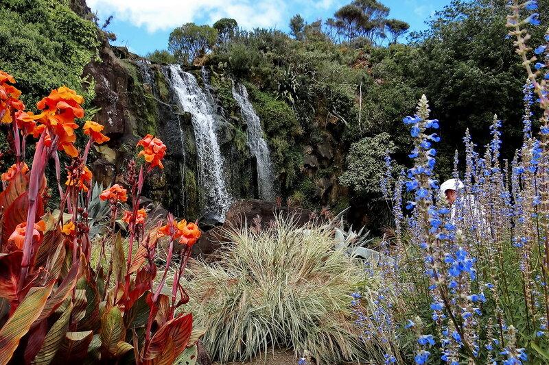 В парке водных растений...