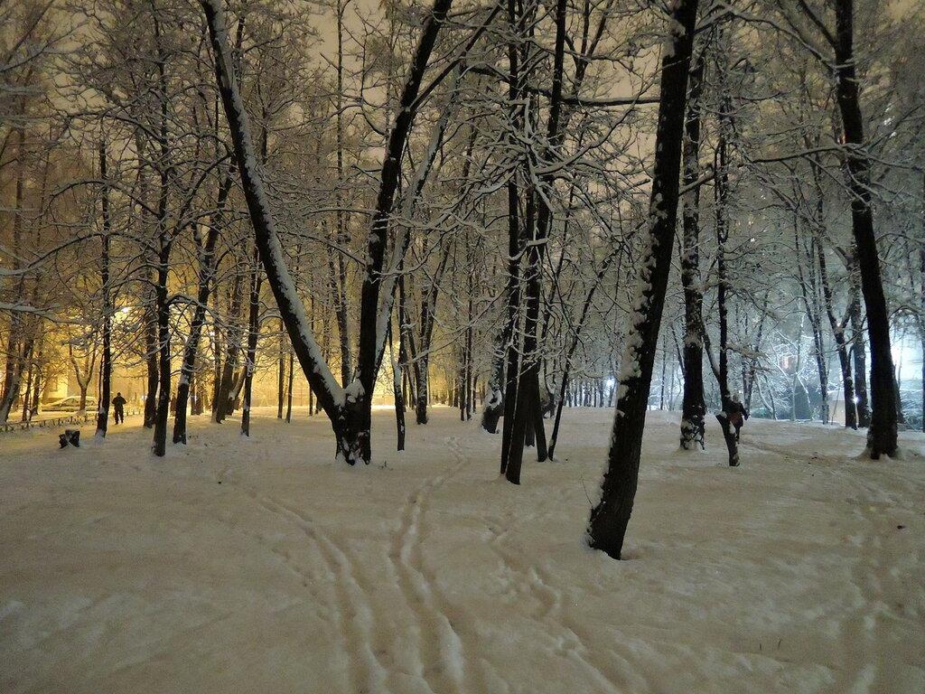 В Москве выпал снег
