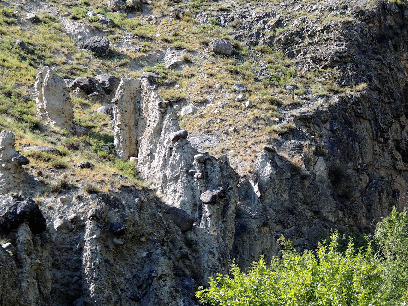 Чулышманская долина Грибы каменные 05 авг. 2015 г., 15-06.JPG