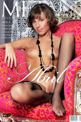 Журнал Журнал MetArt №1 (2010): Abril A Presenting Abril
