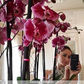 http://img-fotki.yandex.ru/get/15533/322339764.38/0_14ea17_3211d122_orig.jpg
