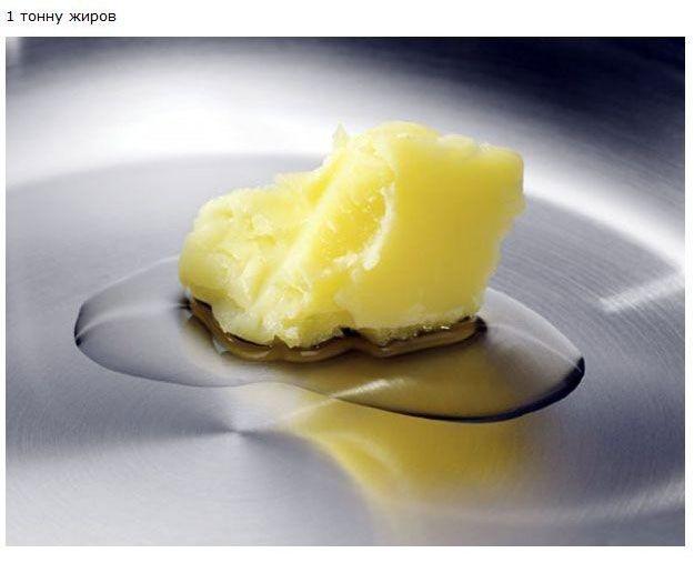 Что съедает человек за свою жизнь