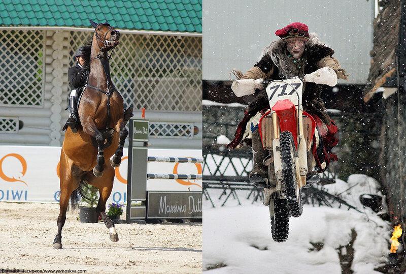 Лошади.15..jpg
