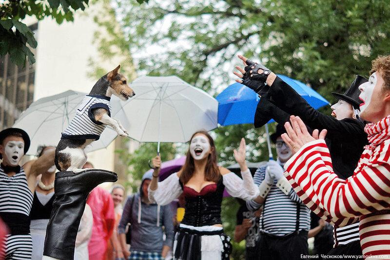 026. Фестиваль Яркие люди. 07.07.13.33..jpg
