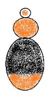 Bombus agrorum (pascuorum)