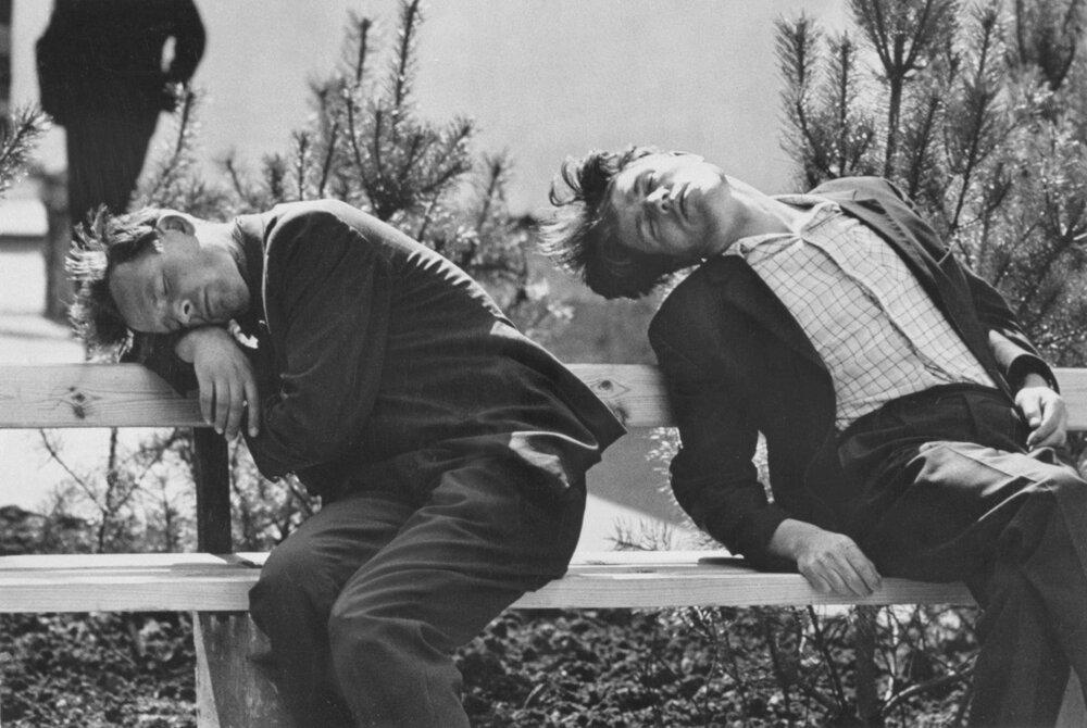 1950. На скамейке