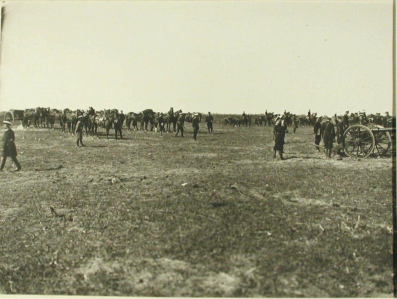 29. Юнкера во время практической стрельбы из орудий образца 1895 года. Красное Село