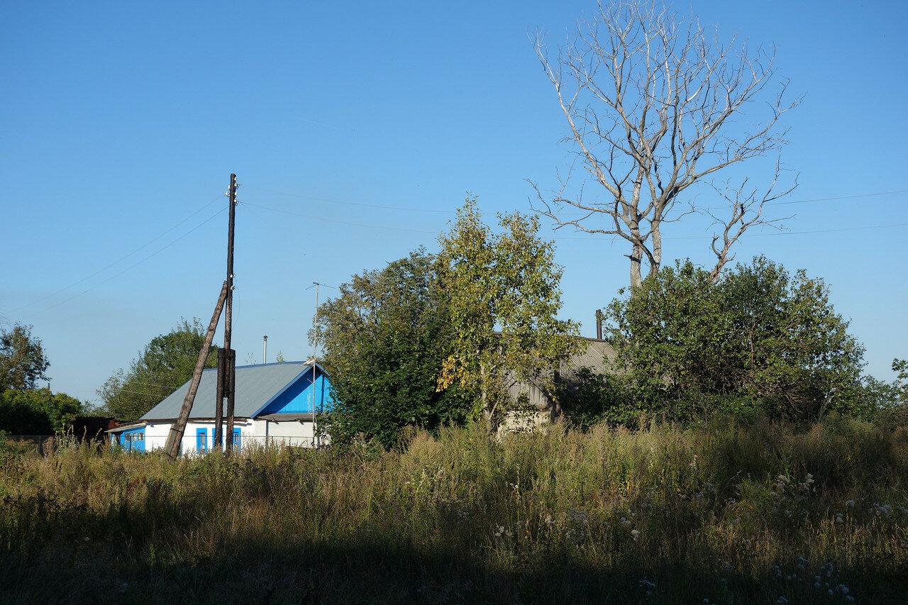 'украинский' дом и сухое дерево