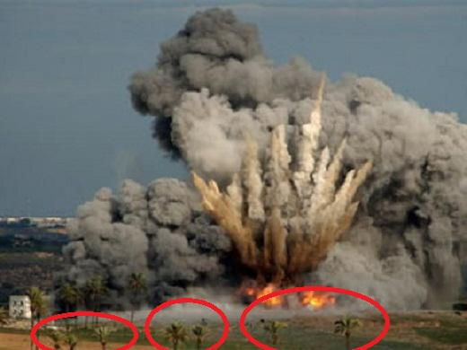Хунта разбомбила под Донецком заповедник обезьян