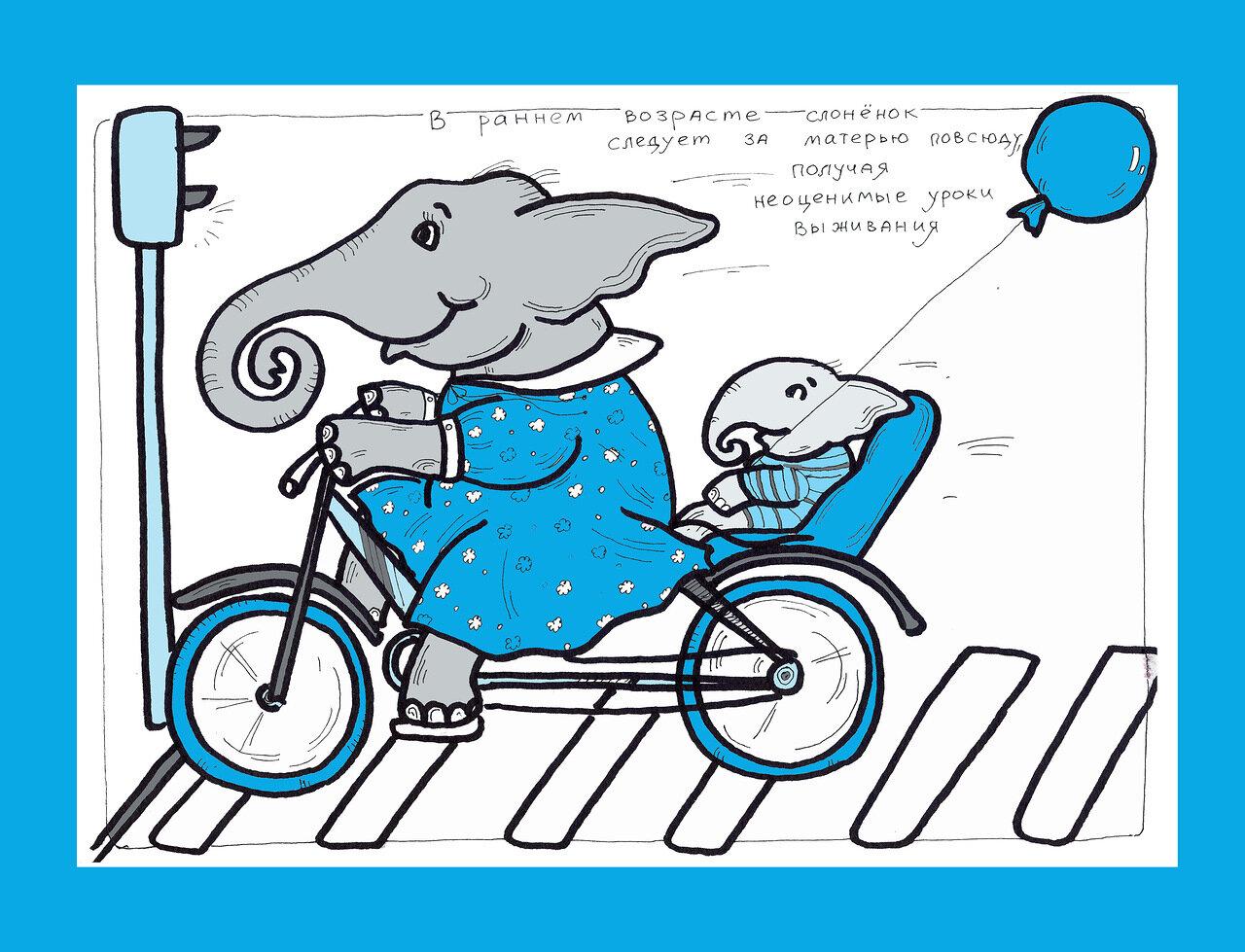 на велосипеде.jpg