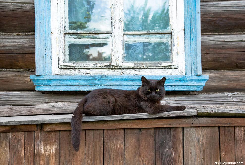 3. Из людей же, наверное, самый известный, с кем связан город — Андрей Тарковский. Он родился в селе