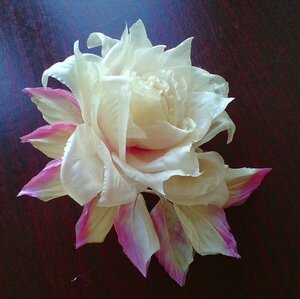 Роза - царица цветов 3 - Страница 5 0_1196bb_c6718912_M
