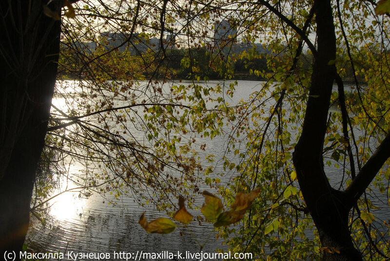 Осенняя рябь