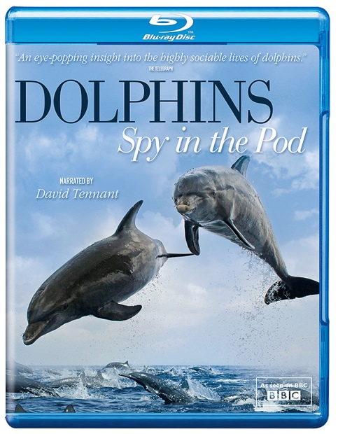 Дельфины — Шпион в стае / Dolphins — Spy In The Pod (2014) HDTVRip 720p