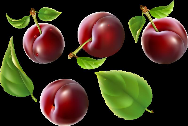 фрукты и ягоды (22).png