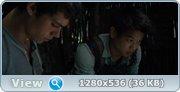Бегущий в лабиринте BDRip 720p