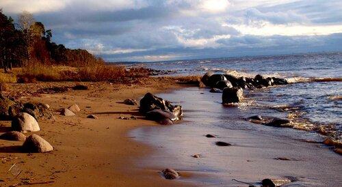 Краски осеннего залива 2010
