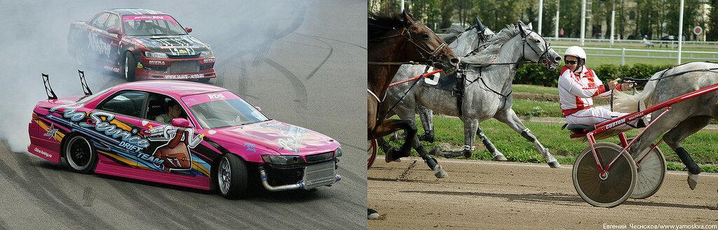 Лошади.24..jpg