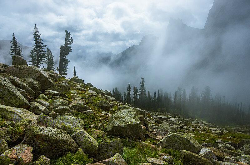 Тайгишонок в облаке