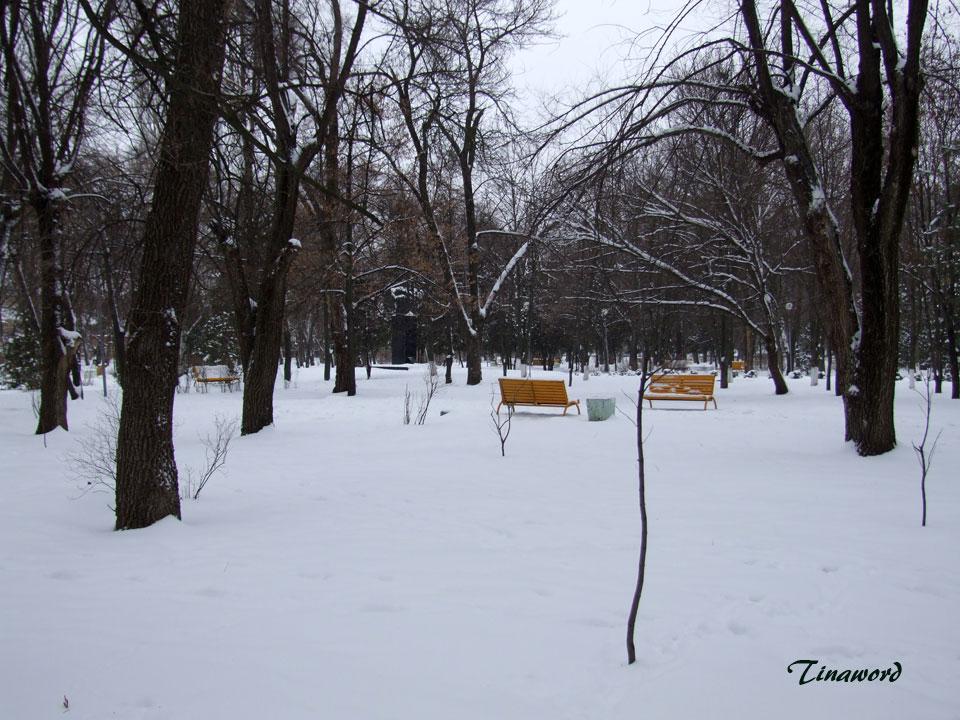 Парк-им.-В.И,-Ленина-18.jpg