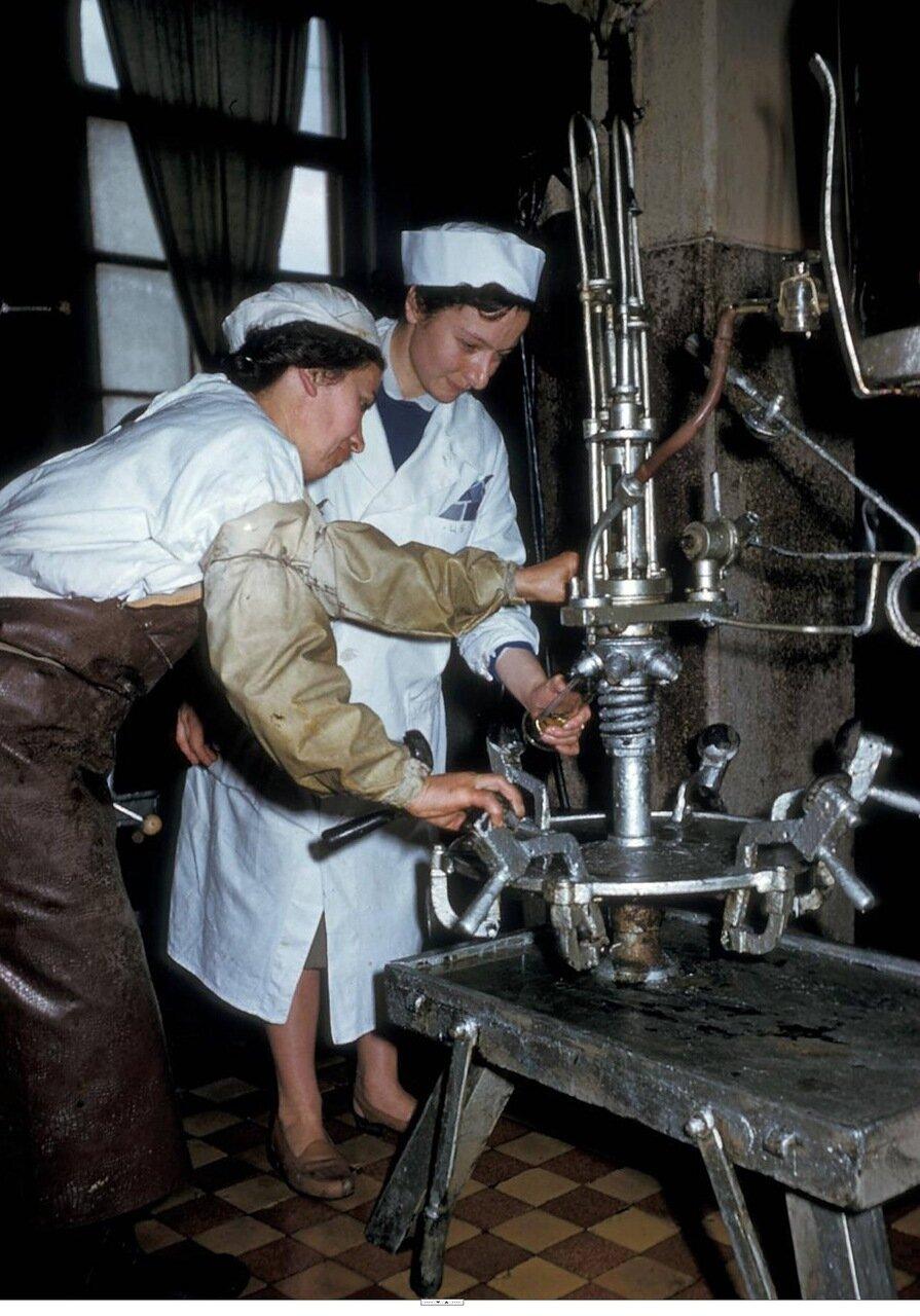 Тбилиси. Завод по производству шампанских вин