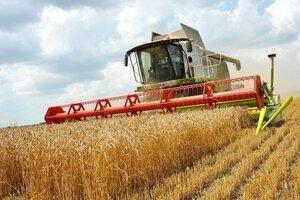 Фермеры Молдовы могут подавать заявки на выдачу кредита