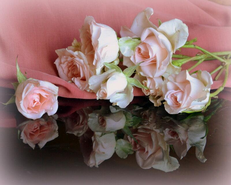 Наполняя рассвет светлой свежестью, ароматом волнующих роз...