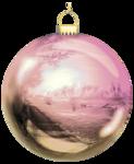VC_Christmasrose_EL10.PNG