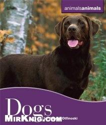 Книга Dogs (Animals Animals)