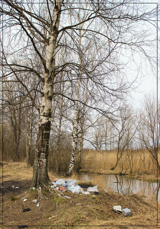 Любителям пикника на природе посвящается_2