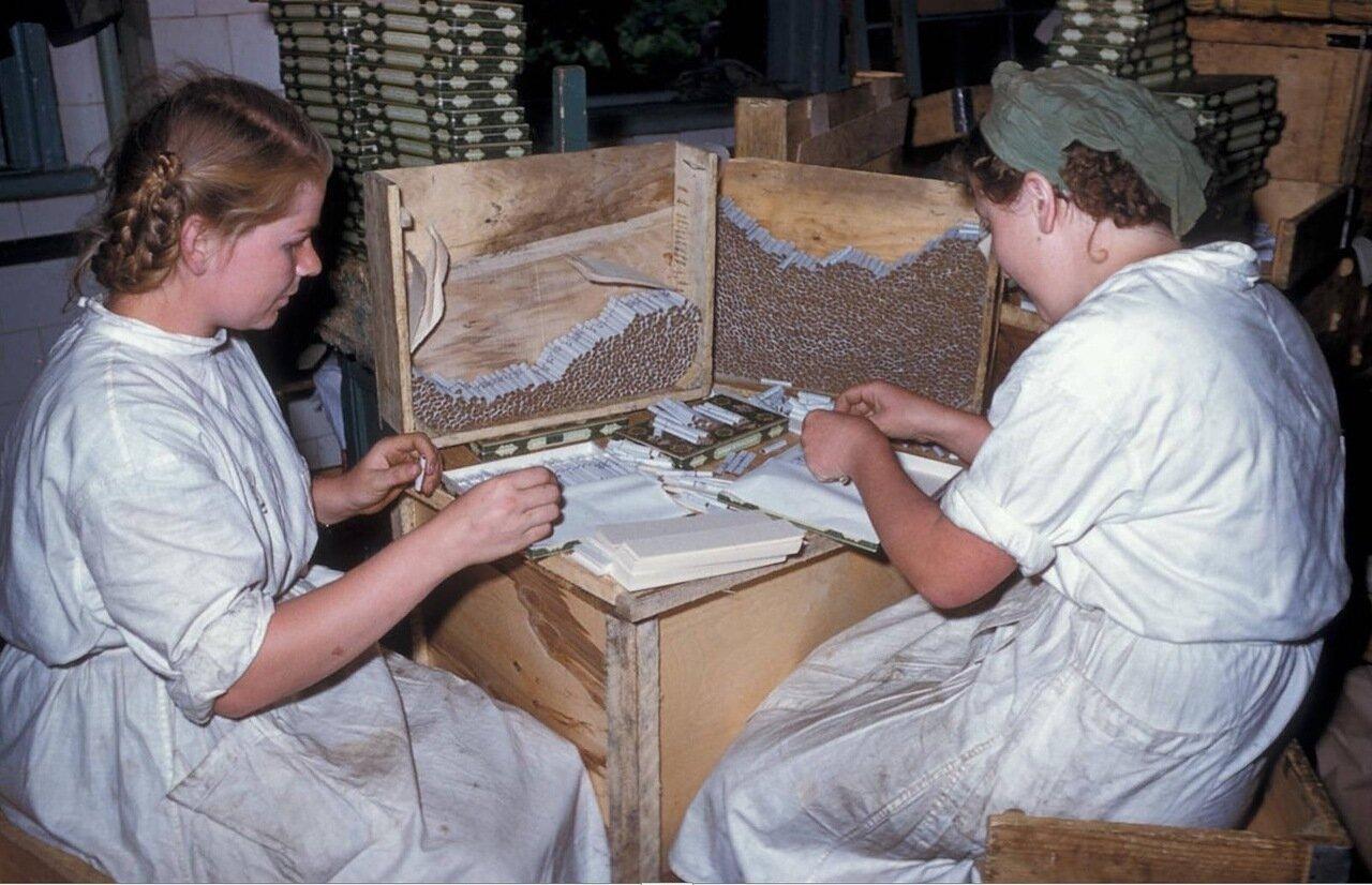 Тбилиси. Женщины, работающие на сигаретной фабрике