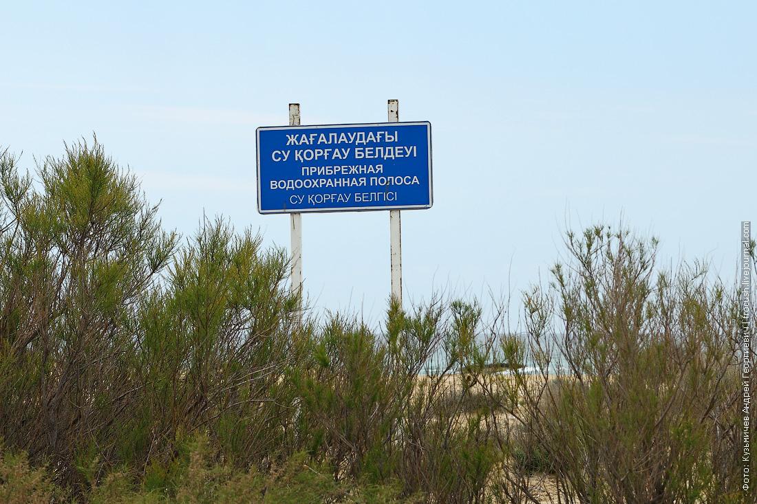 Каспийское побережье