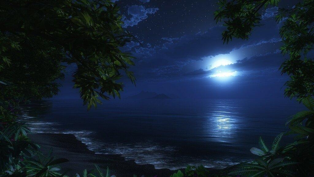 обои креатив...ночной берег.jpg