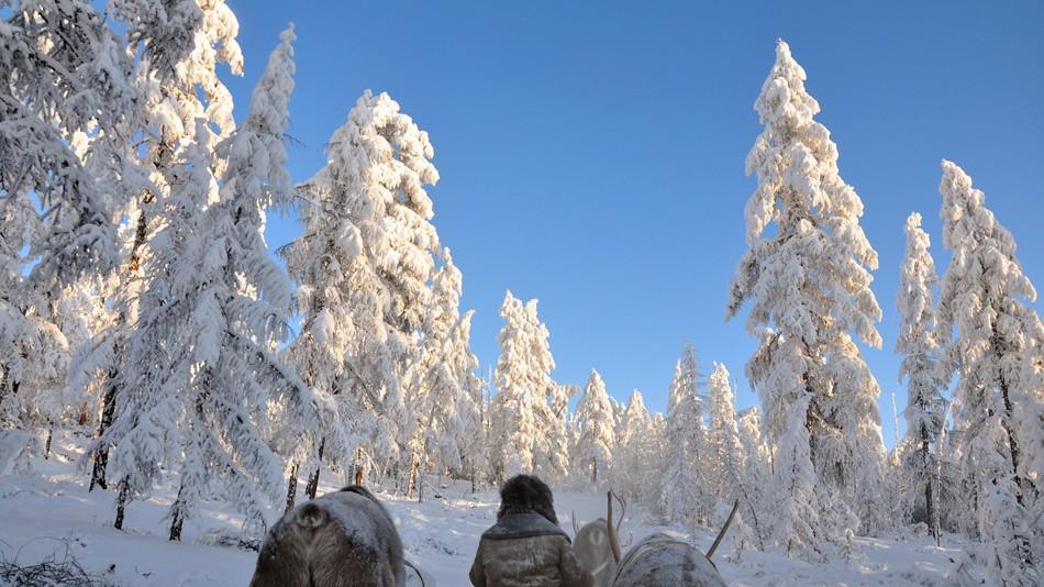 Деревня Оймякон , что в Якутии, известна как один из «полюсов холода». По ряду параметров Оймяконска