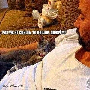 Раз уж не спишь, то пошли пожрём ??? )))